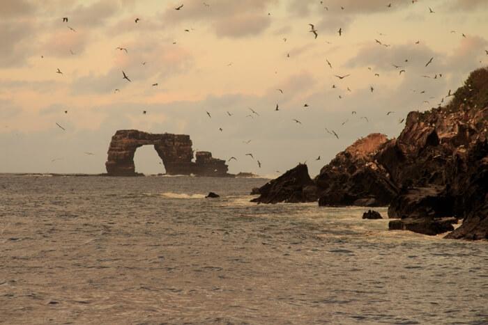 Galapagos_Aqua_Fels